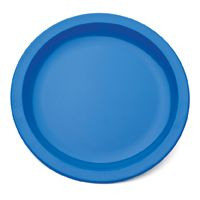 "Blue Polycarb Antibacterial Plate 6.7"" (12)"