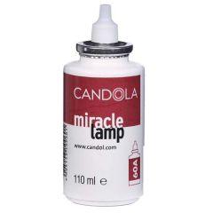 Candola Fuel Cell, 40 Hour Burn.