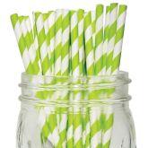 Green & White Stripe Paper Straws 8